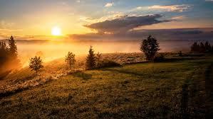 Sunrise Captions Let Your Insta Shine Growing Social Media