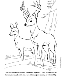Small Picture Deer and fawn coloring pages to print and color 016