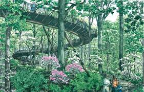 atlanta botanical garden hours a rendering of the finished foot long canopy walk which collapsed is