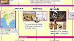 indus Valley Civilization Timeline