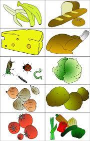 Food Flash Cards Food Lesson Flashcards
