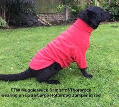 hotter dog fleece jumper bright red