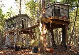 kids tree houses with zip line. Modren Zip Kids Tree Houses With Zip Line Backyard Builds Tour An Epic 35000 Treehouse With Throughout Kids Tree Houses Zip Line