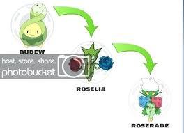Pokemon Cherrim Evolution Chart Pokemon Buizel Evolution Chart Indiansnacks Co
