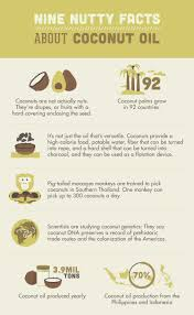 how to clean makeup brushes with coconut oil. nine nutty facts about coconut oil how to clean makeup brushes with