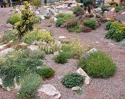 Small Picture Garden Design Garden Design with Creating a rock garden design u