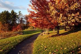 Cornell Plantations Garden