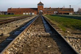 Resultado de Imagem parágrafo Auschwitz