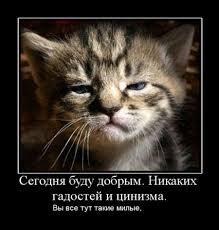 В октябре украинцы продали почти на 105 миллионов долларов больше, чем купили - Цензор.НЕТ 4644