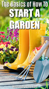 start a garden basic gardening tools