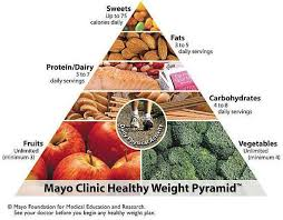 mayo clinic t food pyramid 11 life changing tips and tools to lose weight stay healthy