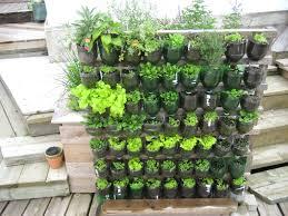 Small Picture Vegetable Garden Design Ideas For Designing A Garden Trends