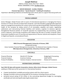 International Format Resume Accountant Cv Format Accountant Resume Sample And Template