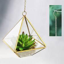 mini geometric glass vase succulent terrarium kit