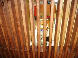 astonishing home wall design and decoration using slatted walls magnificent ideas to create transpa wooden