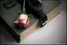 flower red old book rose memories wallpaper flowers 1196x801