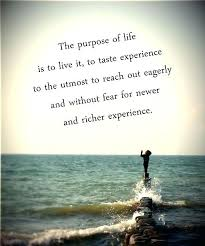 Quotes Purpose Of Life Extraordinary Purpose In Life Quotes Marvelous Find Your Purpose In Life 48