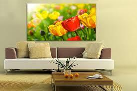 Imagini pentru flori de living