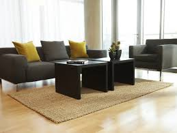 bleached jute rug for living rooms ideas