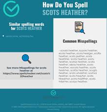 The international phonetic alphabet (ipa)note 1 is an alphabetic system of phonetic notation based primarily on the latin alphabet. Correct Spelling For Scots Heather Infographic Spellchecker Net