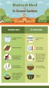 raised bed gardens vs ground gardens