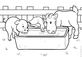 A Pig One Go And One Cow Drinks Water Together Coloring Pages 24