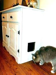 furniture to hide litter box. Cat Litter Boxes Furniture Hidden Box Medium Size Of Attractive Kitty To Hide