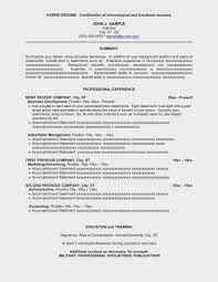 Hybrid Resume Template Word Professional Adadrivered Com
