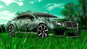 bentley continental gt crystal nature car