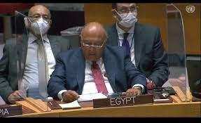 عاجل  نص كلمة سامح شكرى فى جلسة مجلس الأمن بشأن سد النهضة