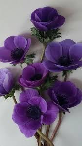 Pin Uživatele Kacka Lipserova Na Nástěnce Kytičky Květiny