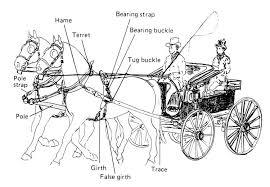 Harness Charts Pair Horse Harness Horses Horse Drawn
