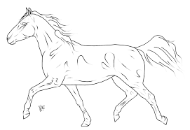 trotting horse drawing. Interesting Trotting Trotting Horse Lines By Peachesroxstock  For Drawing