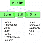 Sunni Vs Shia 15 Differences With Video Diffen