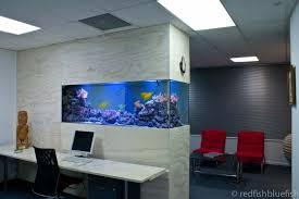 office fish tank. Office Aquarium Fish Tank