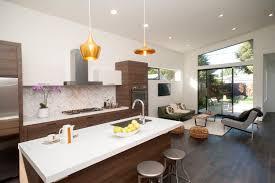 Mid Century Modern Home Design - gnscl