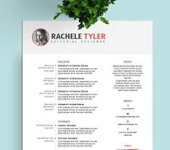 Indesign Resume Template Beauteous Adobe Illustrator Resume Template New Adobe Illustrator Resume