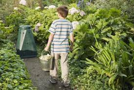 garden compost. compost bins placed near the garden make composting convenient.