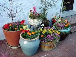container garden. Container-garden Container Garden