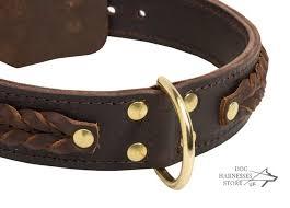 quick release dog collar