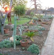 Desert Landscaping Ideas from a Phoenix Front Yard   Sunset together with How to Make Desert Landscape Design   Desert Corner in Your Garden likewise  additionally  besides Best 25  Succulent landscaping ideas only on Pinterest further 1349 best Palm Springs Style Gardening in the Desert images on in addition Cool Desert Landscaping Ideas with Small Path also Short Plants in furthermore Desert Garden Design Ideas   Garden Design in addition  as well Mojave Rock Ranch Reinvents The Desert Garden Garden Design Desert also Desert Garden Design   gardensdecor. on desert garden designs