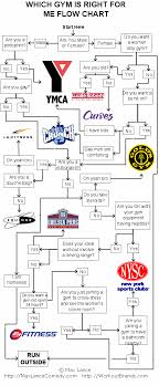 Which Gym Is Right For Me Flow Chart Max Lance Typing