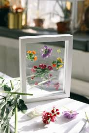 hang your flowers in the window or on the wall and enjoy