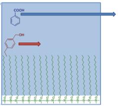 Hplc Principle Principle Of Reversed Phase Chromatography Hplc Uplc With Animation