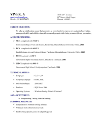 Resume Template In Google Docs - Templates