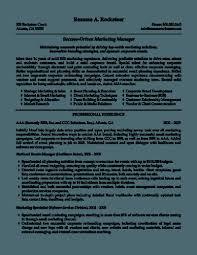 Cv Marketing Director Resume Cover Letter Template