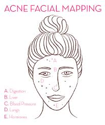 Pimples On Body Chart How To Use Facial Mapping To Reduce Breakouts Hum