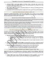 cfo resume sample resume examples templates cfo sample sm