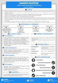 Mid Level Visual Resume