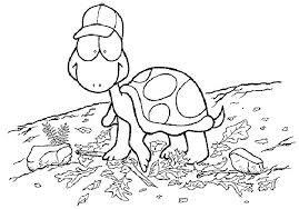 Small Picture Coloring Page Tortoise animal coloring pages 7